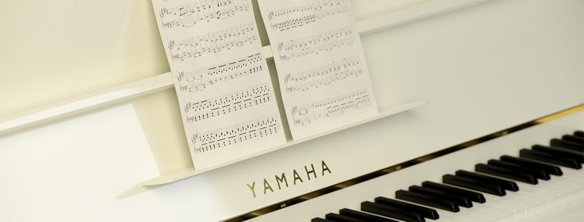 PIANO (detail) © Matte Real